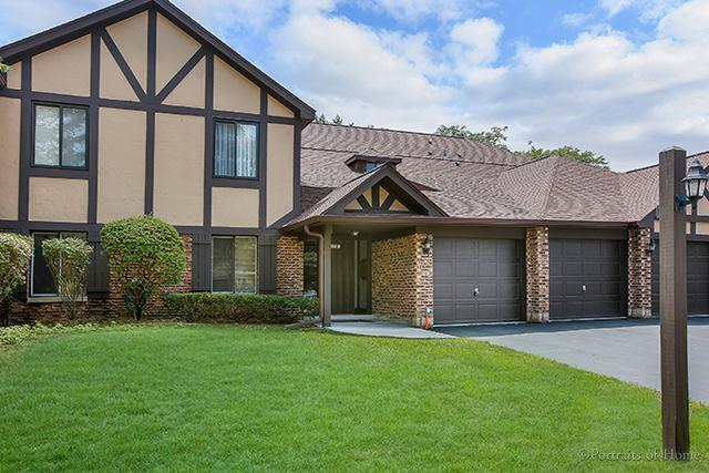 880 Sheldon Court A, Wheaton, IL 60189 (MLS #09698491) :: The Wexler Group at Keller Williams Preferred Realty
