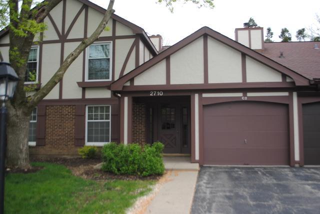 2710 Northampton Drive C2, Rolling Meadows, IL 60008 (MLS #09698663) :: Ani Real Estate