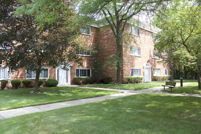 6878 W Touhy Avenue B, Niles, IL 60714 (MLS #09698673) :: Ani Real Estate