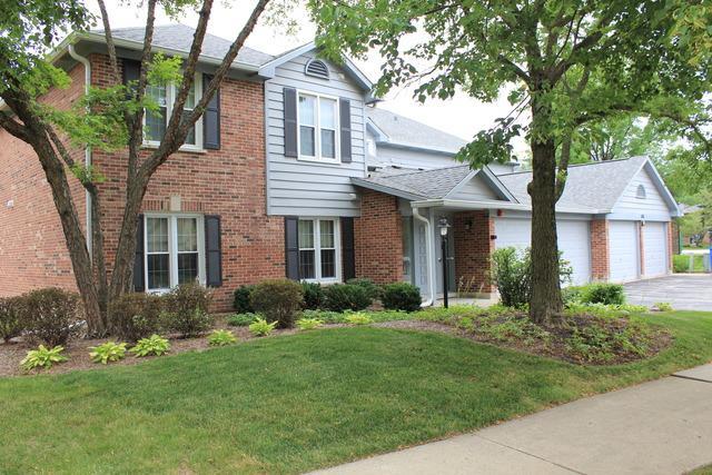 188 Grove Avenue D, Des Plaines, IL 60016 (MLS #09698699) :: Ani Real Estate