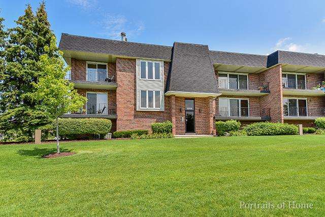 15700 Lake Hills Court 2N, Orland Park, IL 60462 (MLS #09698837) :: The Wexler Group at Keller Williams Preferred Realty