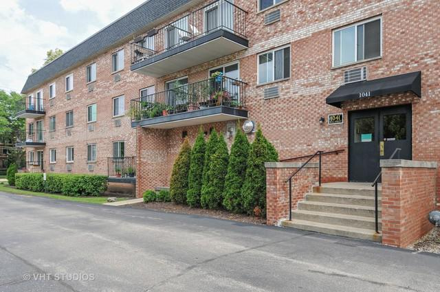 1041 N Mill Street #207, Naperville, IL 60563 (MLS #09698842) :: The Wexler Group at Keller Williams Preferred Realty