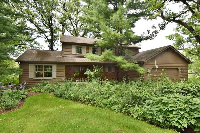 39W684 Caribou Trail, St. Charles, IL 60175 (MLS #09698862) :: The Wexler Group at Keller Williams Preferred Realty