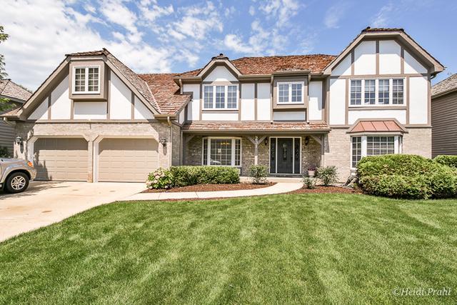 231 Brighton Drive, Wheaton, IL 60189 (MLS #09698907) :: The Wexler Group at Keller Williams Preferred Realty