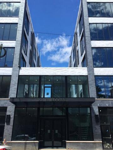 20 N Loomis Street B, Chicago, IL 60607 (MLS #09699242) :: The Wexler Group at Keller Williams Preferred Realty