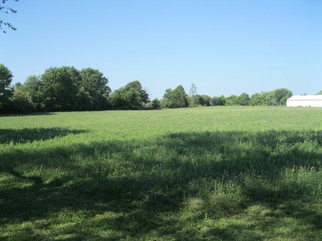 98 Prairie Acres, MONTICELLO, IL 61856 (MLS #09701239) :: Littlefield Group