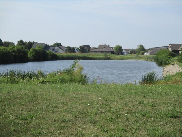 109 Ponder Drive, Tuscola, IL 61953 (MLS #09701609) :: Littlefield Group