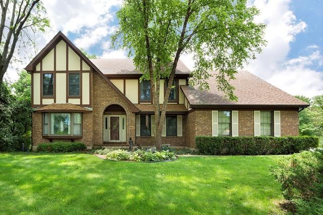 437 Dogwood Court, Deer Park, IL 60010 (MLS #09703929) :: The Jacobs Group