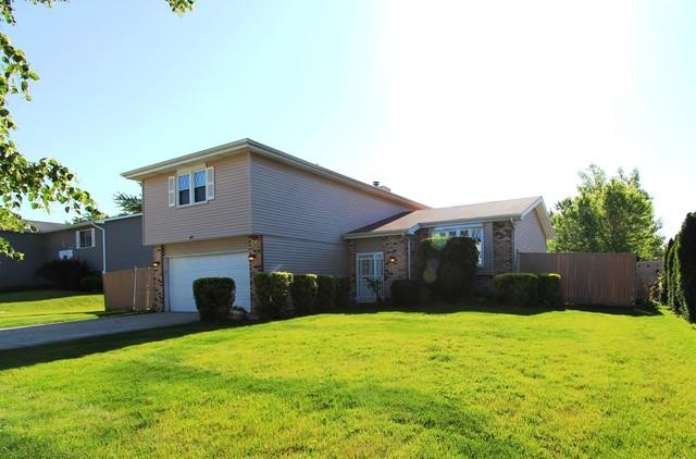 57 Timberlane Road, Matteson, IL 60443 (MLS #09714781) :: Domain Realty