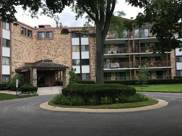 250 W Parliament Place #403, Mount Prospect, IL 60056 (MLS #09721907) :: The Schwabe Group