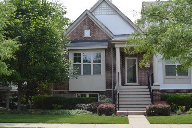 2501 Waterbury Lane #2501, Buffalo Grove, IL 60089 (MLS #09722915) :: The Schwabe Group
