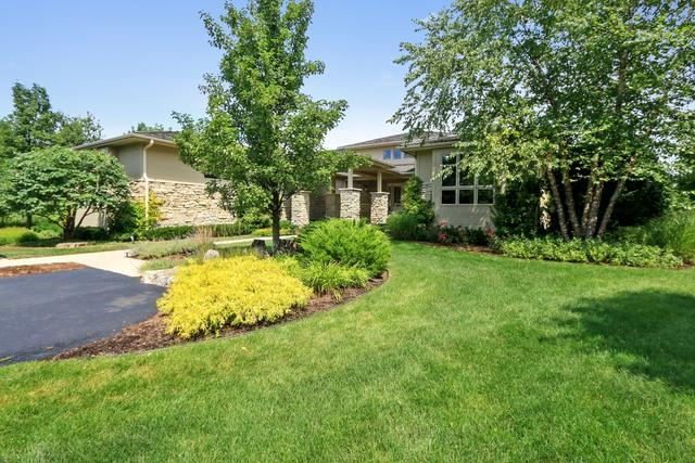 4596 Patricia Drive, Long Grove, IL 60047 (MLS #09723039) :: The Schwabe Group
