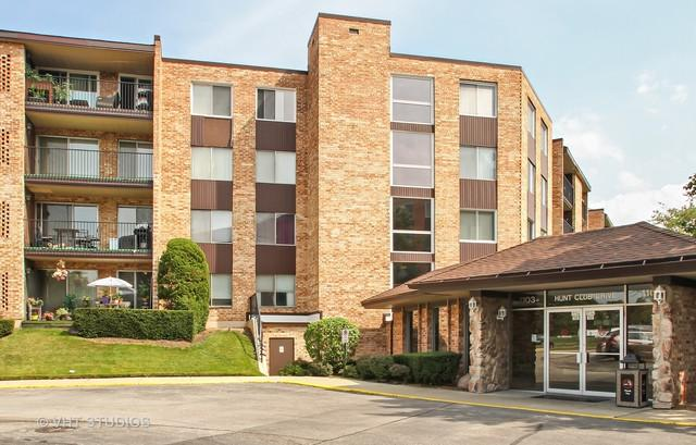1103 S Hunt Club Drive #331, Mount Prospect, IL 60056 (MLS #09724102) :: The Schwabe Group