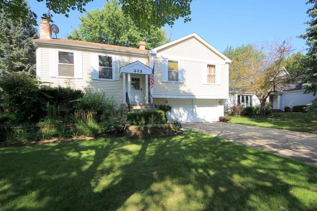 222 Abilene Lane, Vernon Hills, IL 60061 (MLS #09724134) :: The Schwabe Group