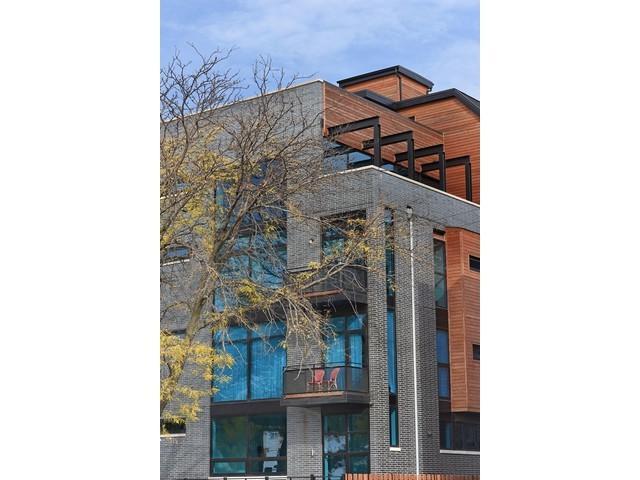 2607 N Ashland Avenue 1E, Chicago, IL 60614 (MLS #09725075) :: The Perotti Group