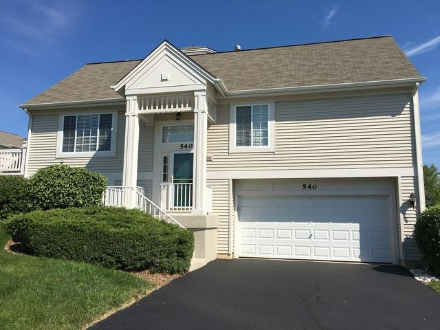 540 Cary Woods Circle, Cary, IL 60013 (MLS #09726567) :: Lewke Partners