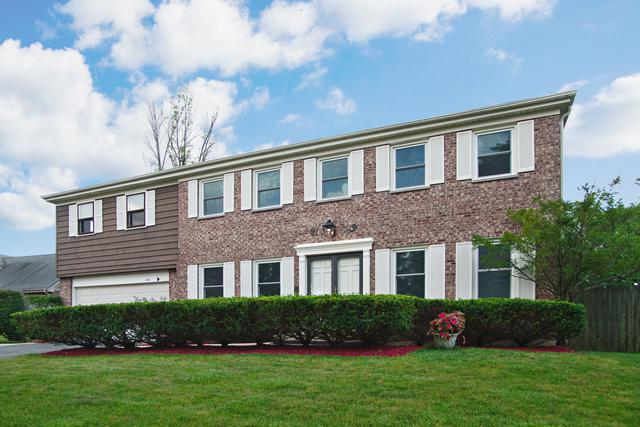 813 W Exner Court, Palatine, IL 60067 (MLS #09726730) :: The Jacobs Group