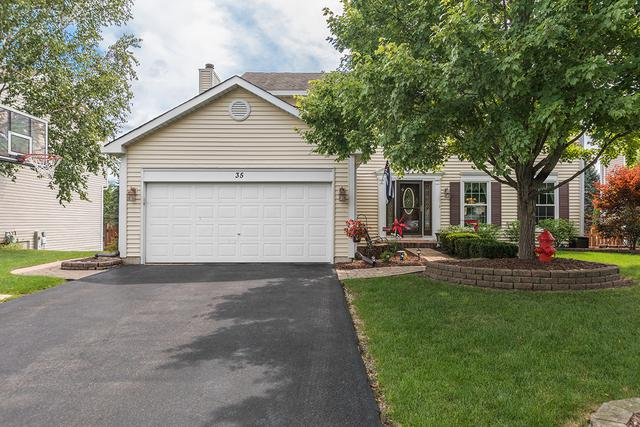 35 Georgetown Drive, Cary, IL 60013 (MLS #09726790) :: Lewke Partners