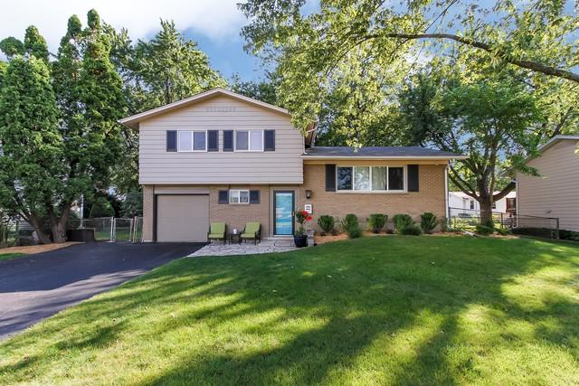 1134 E Anderson Drive, Palatine, IL 60074 (MLS #09727421) :: The Jacobs Group