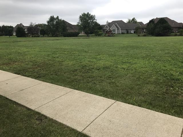 21304 Woodland Way, Shorewood, IL 60404 (MLS #09728409) :: Angie Faron with RE/MAX Ultimate Professionals