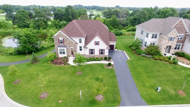 23641 Sanctuary Club Drive, Kildeer, IL 60047 (MLS #09744988) :: Helen Oliveri Real Estate