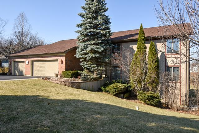 9 High Point Drive, Hawthorn Woods, IL 60047 (MLS #09745384) :: Baz Realty Network | Keller Williams Preferred Realty