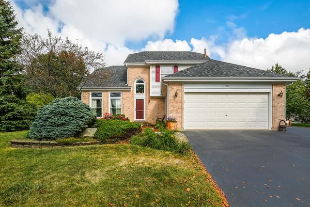 849 Fieldcrest Drive, Bolingbrook, IL 60490 (MLS #09747817) :: The Dena Furlow Team - Keller Williams Realty