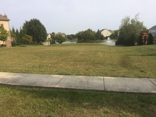 710 Reserve Lane, Joliet, IL 60431 (MLS #09749862) :: Ani Real Estate