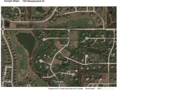 185 N Meadowlark Drive, Hawthorn Woods, IL 60047 (MLS #09753815) :: Helen Oliveri Real Estate
