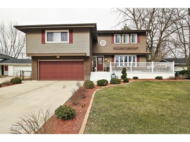 1238 Jeffery Drive, Homewood, IL 60430 (MLS #09754578) :: The Wexler Group at Keller Williams Preferred Realty