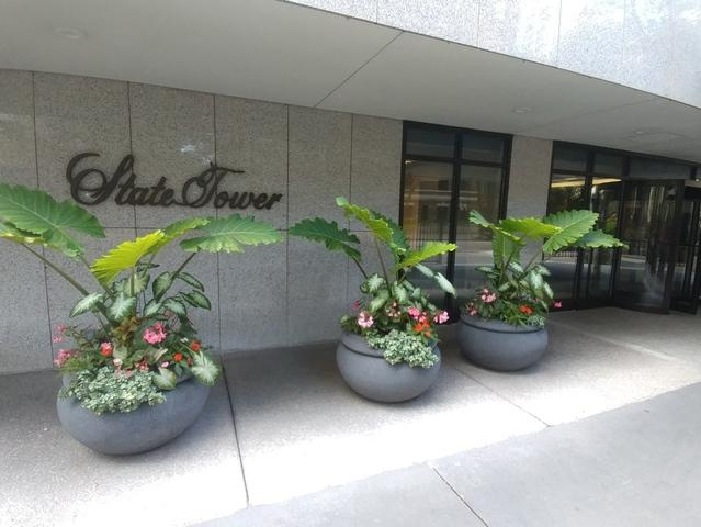 1230 N State Parkway 10A, Chicago, IL 60610 (MLS #09755772) :: Property Consultants Realty