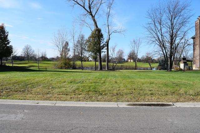 95 Ruffled Feathers Drive, Lemont, IL 60439 (MLS #09755901) :: The Wexler Group at Keller Williams Preferred Realty