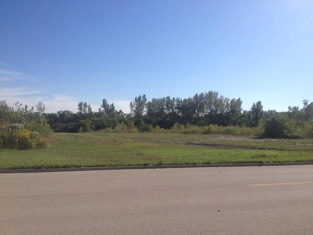 lot 34 Leah Road, Morris, IL 60450 (MLS #09756177) :: The Wexler Group at Keller Williams Preferred Realty