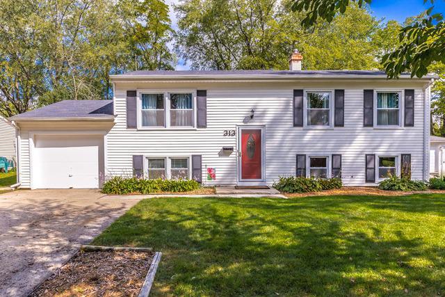313 Westmoreland Drive, Vernon Hills, IL 60061 (MLS #09756688) :: Helen Oliveri Real Estate