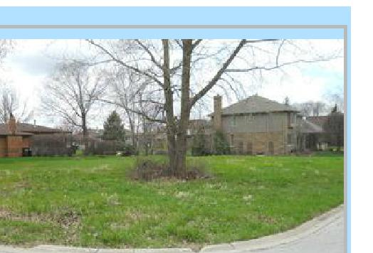12800 S Mill Road, Palos Park, IL 60464 (MLS #09757087) :: The Wexler Group at Keller Williams Preferred Realty
