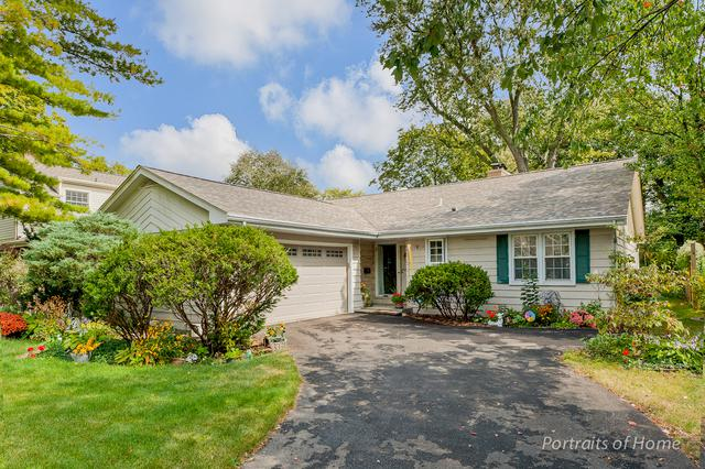 1017 Eddy Court, Wheaton, IL 60187 (MLS #09757088) :: The Wexler Group at Keller Williams Preferred Realty