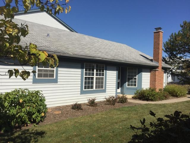 56 White Pine Drive, Schaumburg, IL 60193 (MLS #09757283) :: Domain Realty