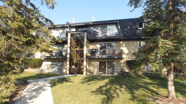 11118 S 84th Avenue 1B, Palos Hills, IL 60465 (MLS #09757451) :: The Wexler Group at Keller Williams Preferred Realty