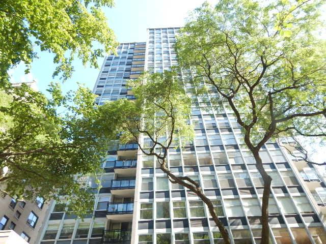 30 E Elm Street 6E, Chicago, IL 60611 (MLS #09757813) :: Property Consultants Realty