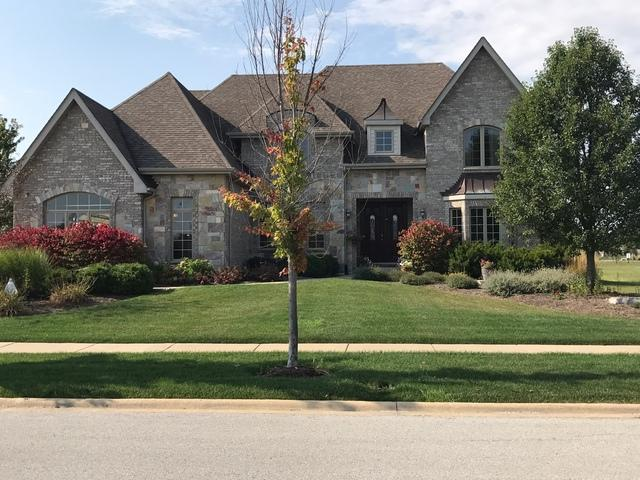 22769 Stanford Drive, Frankfort, IL 60423 (MLS #09757997) :: The Wexler Group at Keller Williams Preferred Realty