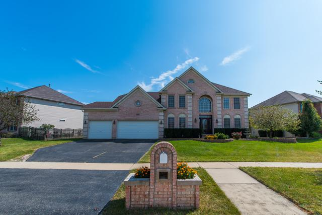 24331 Golden Eagle Drive, Plainfield, IL 60544 (MLS #09758056) :: Ani Real Estate