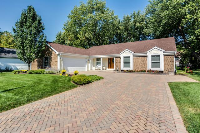1127 Kings Point Court, Naperville, IL 60563 (MLS #09758062) :: Ani Real Estate
