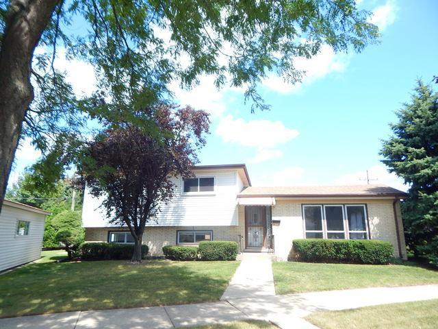 8100 Gross Point Road, Morton Grove, IL 60053 (MLS #09758697) :: Helen Oliveri Real Estate