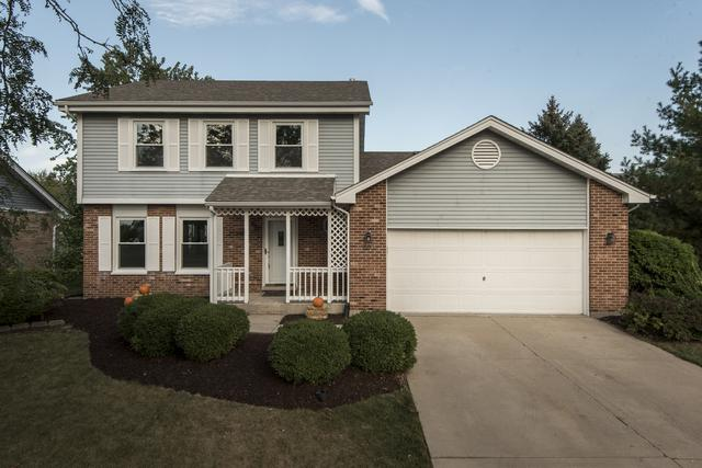 16613 Manchester Street, Tinley Park, IL 60477 (MLS #09758733) :: The Wexler Group at Keller Williams Preferred Realty