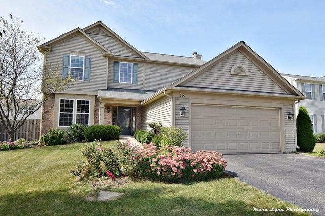 255 S Cranberry Street, Bolingbrook, IL 60490 (MLS #09758734) :: The Wexler Group at Keller Williams Preferred Realty