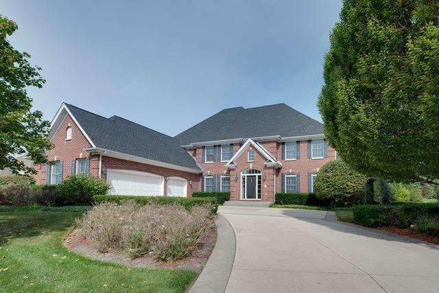 21644 W Mocking Bird Court, Kildeer, IL 60047 (MLS #09758816) :: Helen Oliveri Real Estate