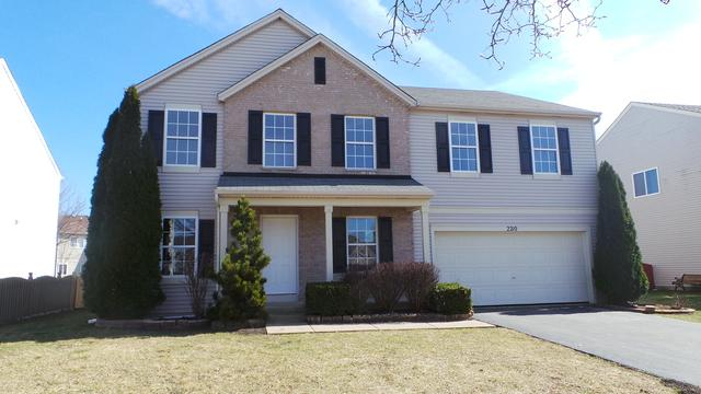 2210 Caton Ridge Drive, Plainfield, IL 60586 (MLS #09759256) :: The Wexler Group at Keller Williams Preferred Realty