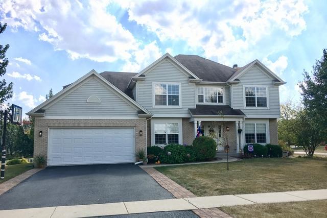 194 Quinlan Avenue, Dekalb, IL 60115 (MLS #09759493) :: MKT Properties | Keller Williams