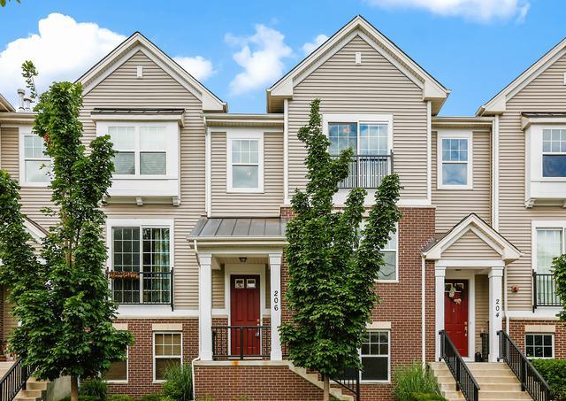 206 Laurel Avenue, Des Plaines, IL 60016 (MLS #09759916) :: Helen Oliveri Real Estate
