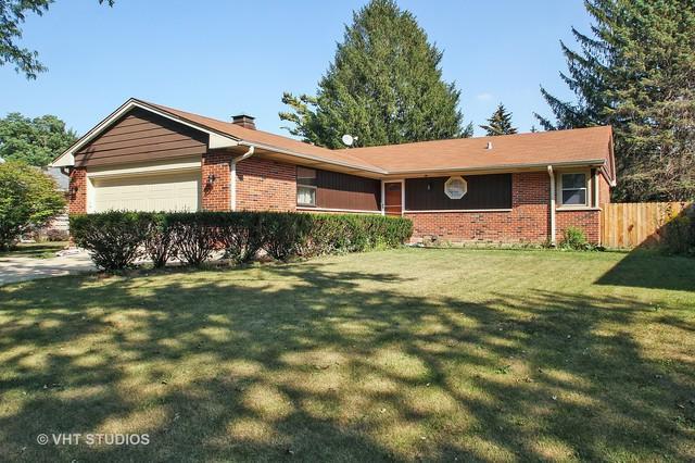 1815 N Park Drive, Mount Prospect, IL 60056 (MLS #09759941) :: Helen Oliveri Real Estate